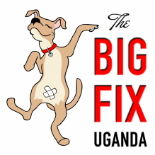 big fix uganda